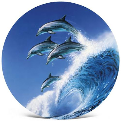 Dolphin Art by Martin Allen - UK Marine Wildlife Artist