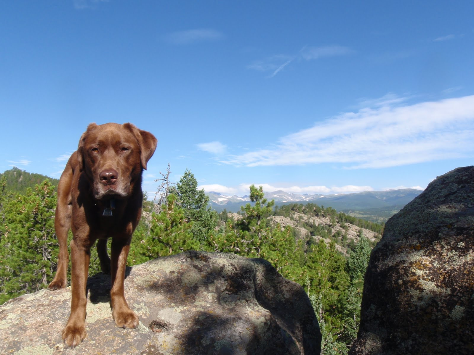 Romping and Rolling in the Rockies: Caves, a bobcat, and Zen riding