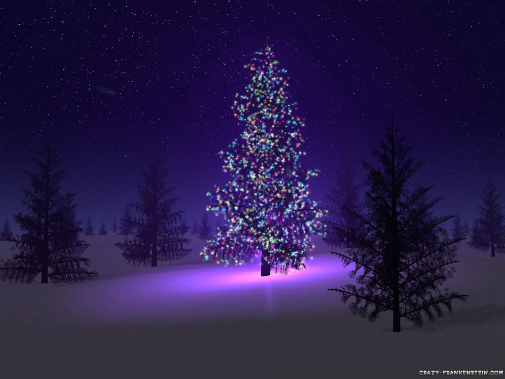 Φωταγώγηση Χριστουγεννιάτικου Δέντρου στο Διδυμότειχο