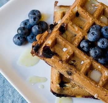 Gray Berry Farm Wild Blueberry Recipes: BLUEBERRY YOGURT ...