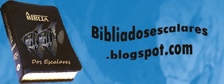 Biblia dos escalares