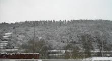 Main-Blick im Winter