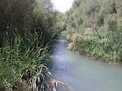 El río fluye sólo... ¡No lo empujes!