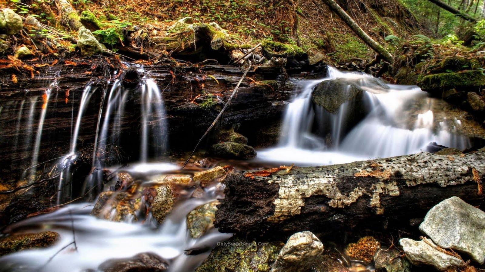 http://2.bp.blogspot.com/_T61BkxQ8qyk/TTQoFvGFh2I/AAAAAAAAB_w/wOXfdp_ukpM/s1600/nature_wallpaper_9_01.jpg