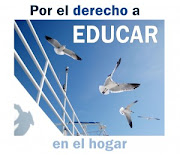 Manifestacin de blogs por el derecho a educar en el hogar