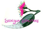 Snowgum Siberians