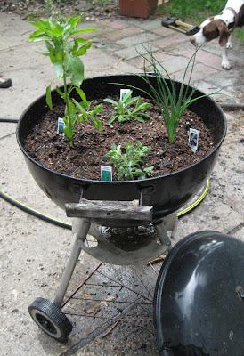 BBQ Herb Garden from Junk Mail Gems