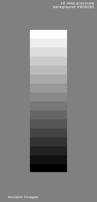 digital glossary  grayscale