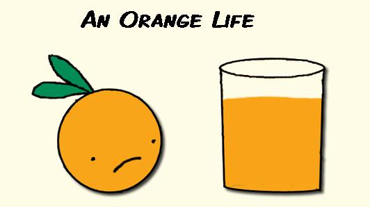 The Orange Life