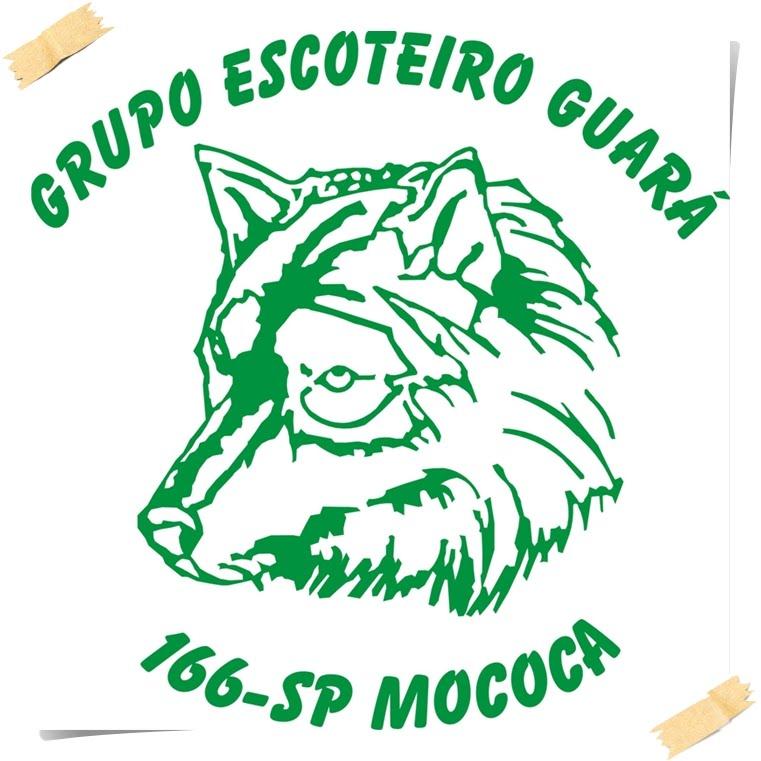 G.E. Guará 166°