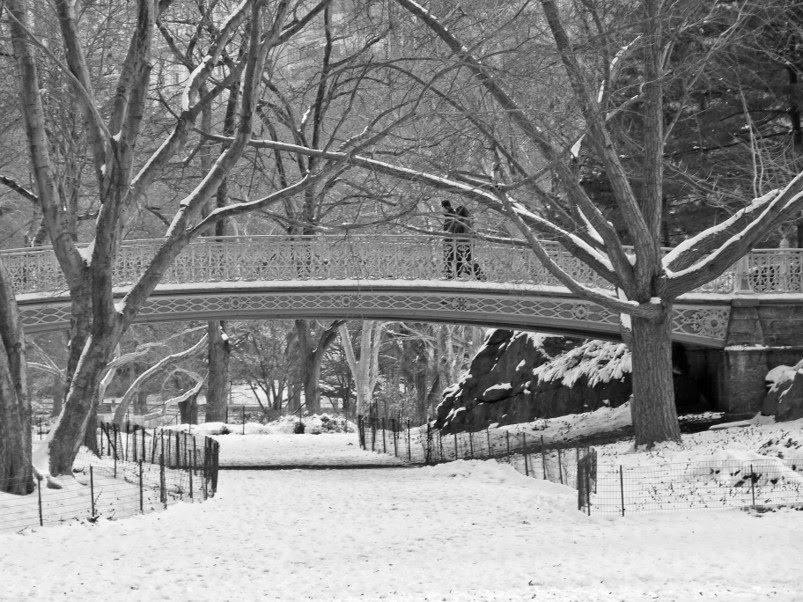 central park new york winter. Central Park : Bridge : Winter