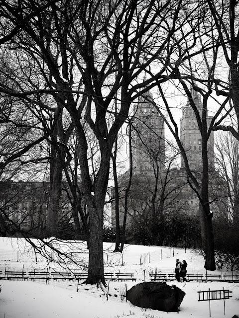 Central Park en Hiver - Promenade - San Remo Apartments
