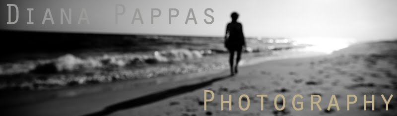 Diana Pappas Photography
