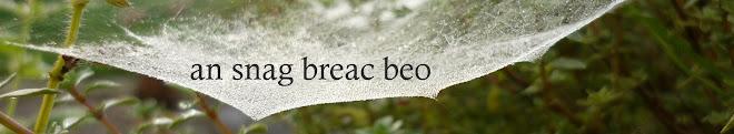 An Snag Breac Beo
