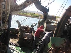 Barco Constitución cargando sardinas a un camión