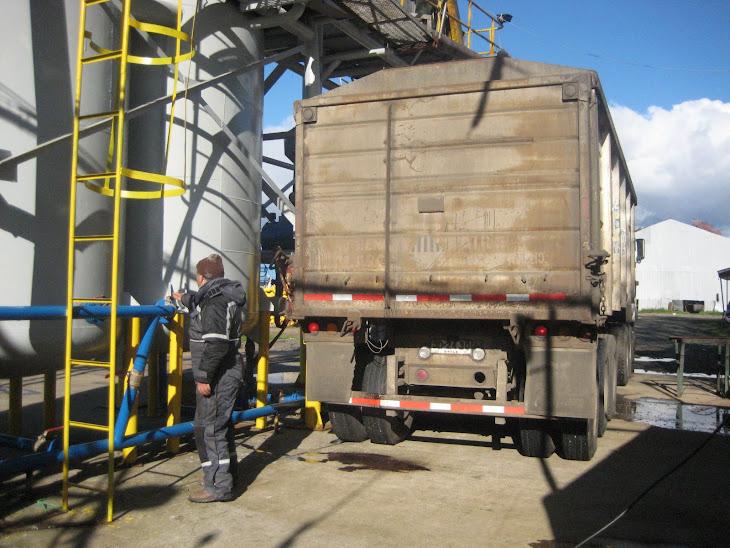 Camión de la empresa Camanchaca cargando sardinas del barco Constitución