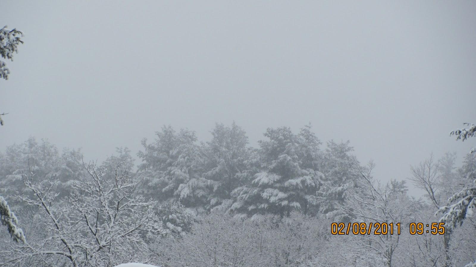 http://2.bp.blogspot.com/_TH_41l9qQQ8/TVGDv1gWVmI/AAAAAAAAGOQ/mIuWokzJ-ls/s1600/snowscapes+007.JPG