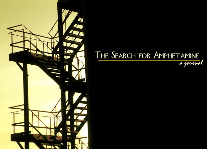 The Search for Amphetamine