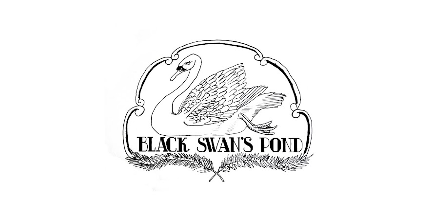 Black Swan's Pond