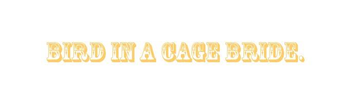 bird in a cage bride