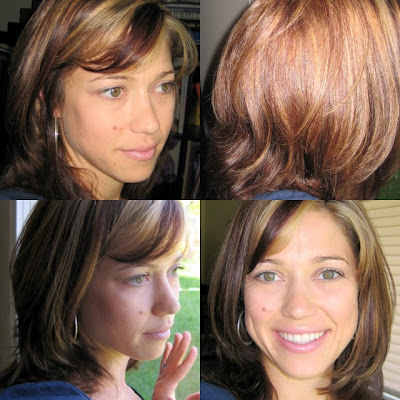 blonde highlights and lowlights on brown hair. We cut off about 6 inches,