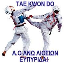 tae kwon do ΑΝΩ ΛΙΟΣΙΩΝ