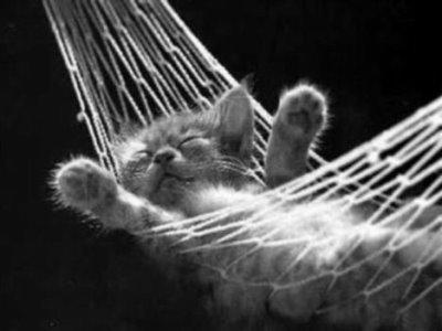 nghỉ ngơi