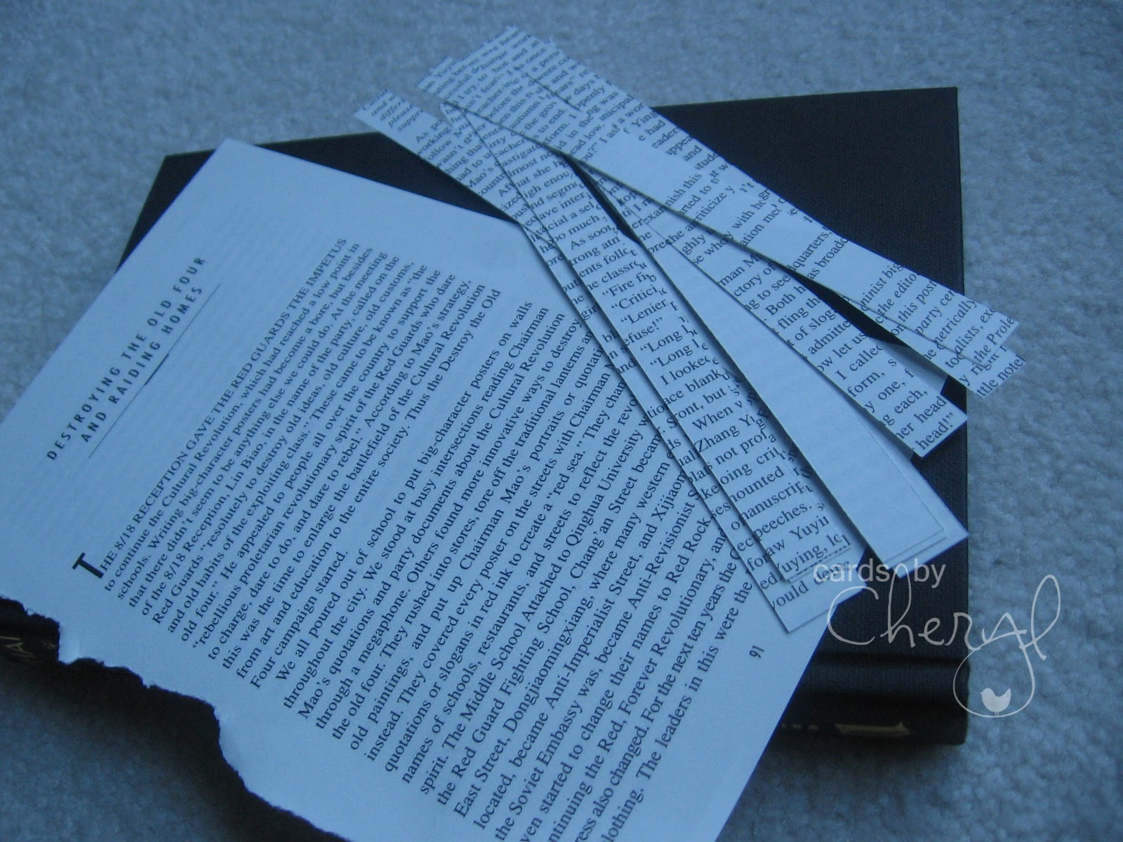 http://2.bp.blogspot.com/_TL_aHHMGUSE/TKfK1z7fV6I/AAAAAAAAA8Y/8ywUU69zpF4/s1600/Book+paper+02.jpg