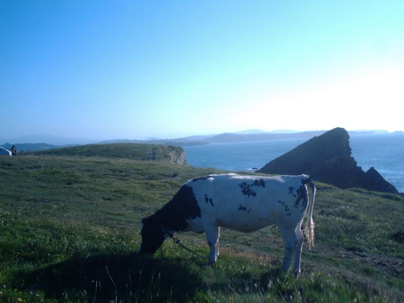 Costa Quebrada en Cantabria