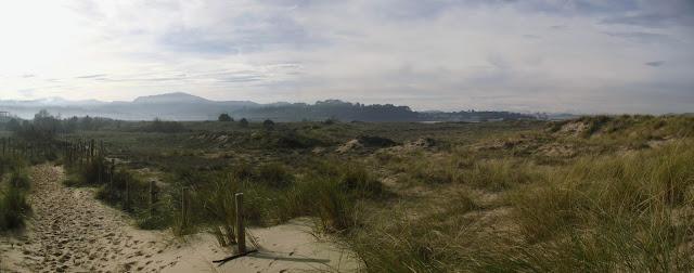 Sendero en las dunas de Somo