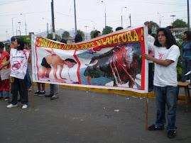DOMINGO 22: PROTESTA EN ACHO