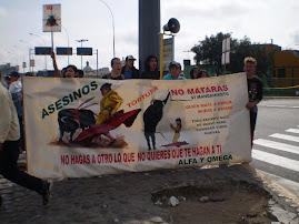 DOMINGO 28 NOV. PROTESTA EN ACHO