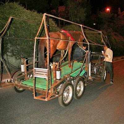 Naturmobil: Cart runs on 'horse power'