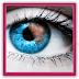 Pato: Fotomontaggi facili online