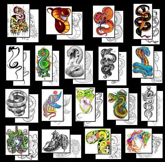 cool Snake Tattoos