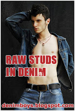 Raw Studs in Denim