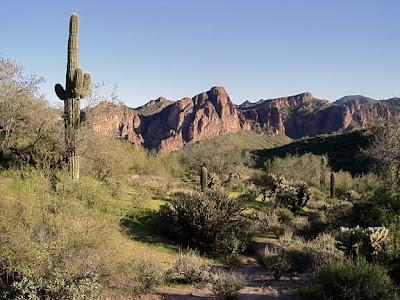 desert scene, Bush Hwy, Phoenix AZ, photo by Robin Atkins