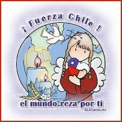 FUERZA CHILE!!!