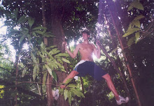 Jungle Swinging, Malyasia