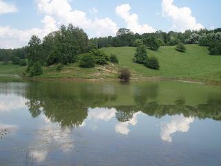 Зеркало воды