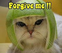 mesaje smsuri iertare