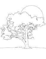 fise de colorat cu copaci