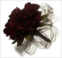 poze trandafiri negri