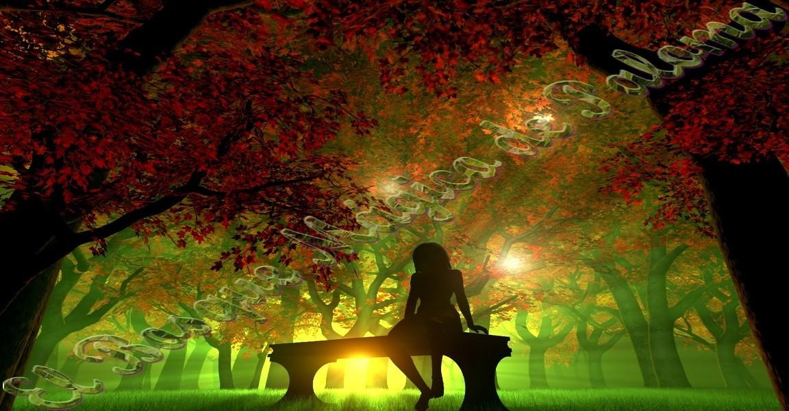 El Bosque Mágico de Paloma