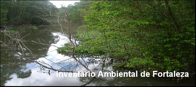 Inventrio Ambiental de Fortaleza