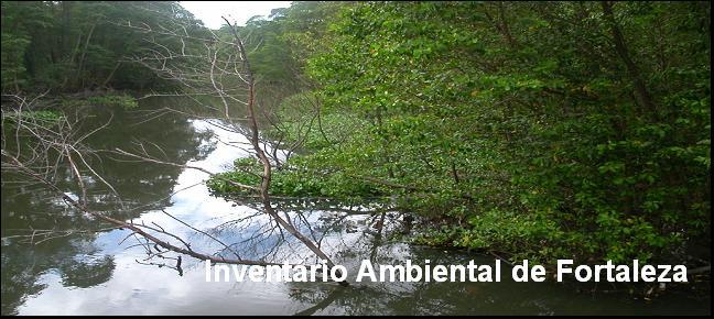 Inventário Ambiental de Fortaleza