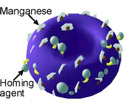 Ultra-miniature bialy-shaped particles — called nanobialys