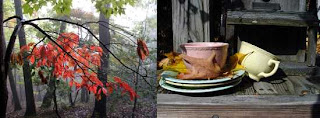 composite photo of randolph femmer's autumn foliage and susan boyer's autumn tea