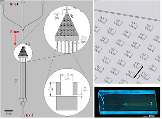 multi-trap nanophysiometer
