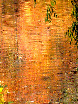 Fall Colors Lake Reflections 2
